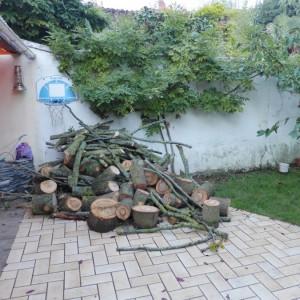 Jardin-Angers-49-avant-travaux-paysagers