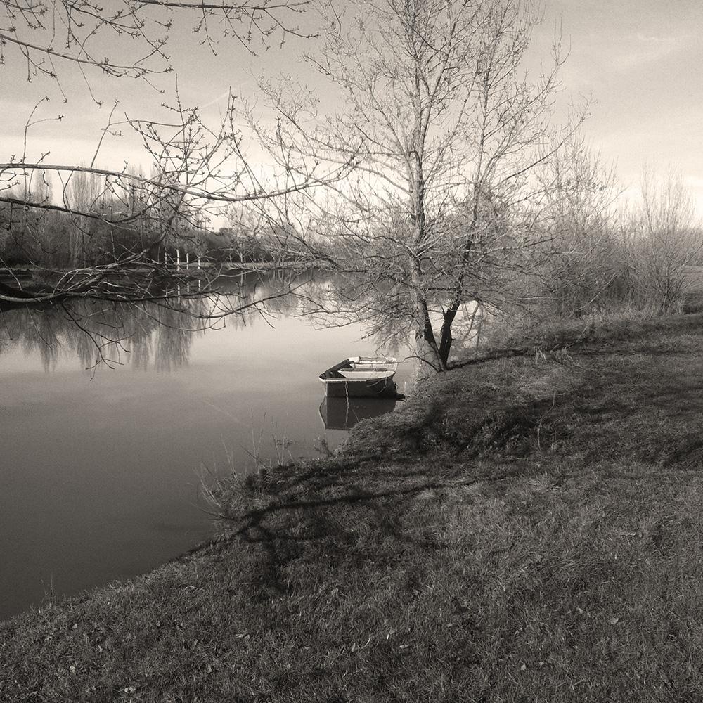 Le layon Chalonnes sur Loire 49