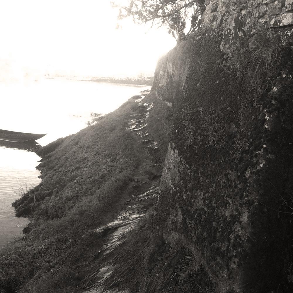 Chemin de bord de loire Chalonnes sur Loire 49
