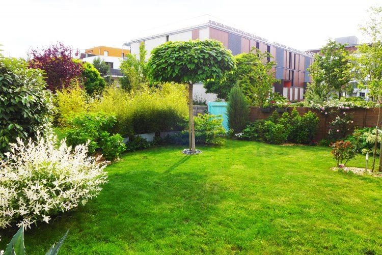 Carr vert a angers l 39 atelier au fond du jardin - Petit jardin image angers ...