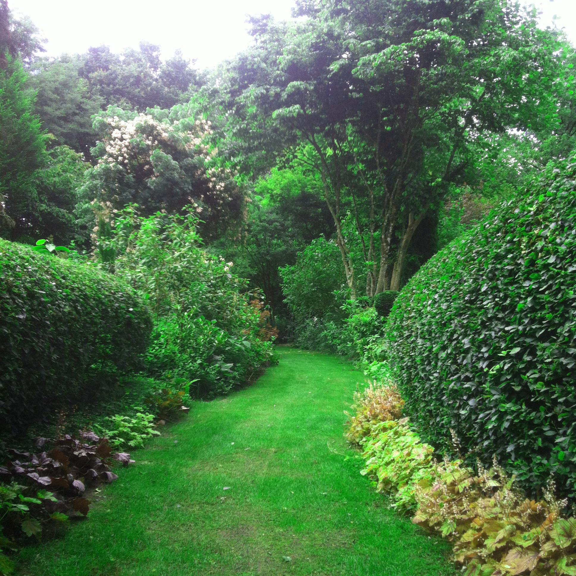 Jardin du Petit Bordeaux allée gazon ras et Heucheras