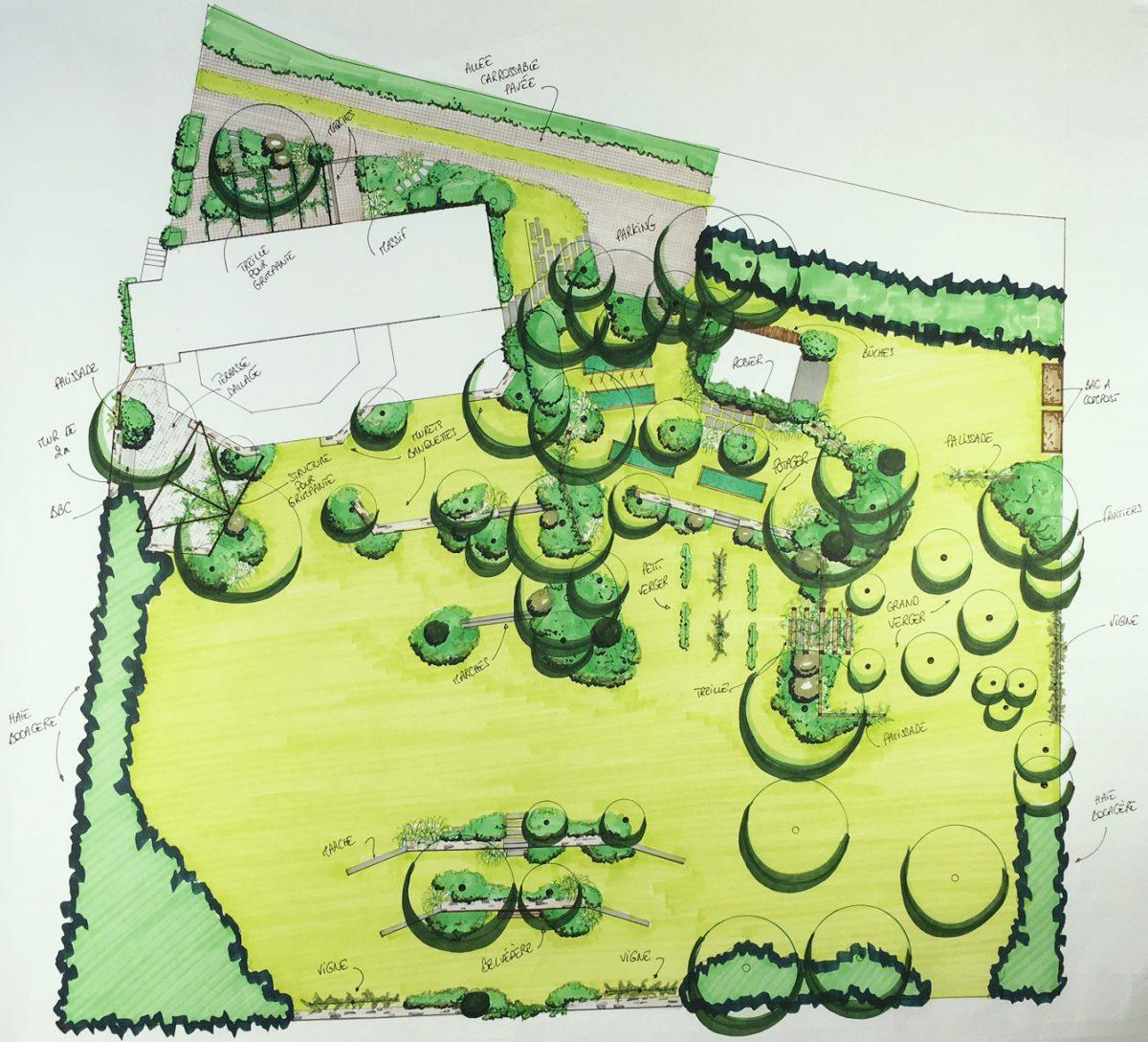 Plan d'avant-projet d'aménagement paysager d'un jardin en pente